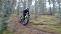 Singletrack trails above Aviemore